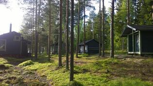 Vasemmalta sauna, päärakennus, vaja ja puusee