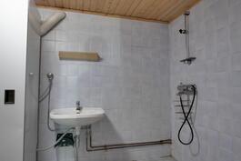 kylpyhuoneessa hyvin suihkutilaa