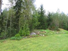 Takapiha rajoittuu kauniiseen harjuun ja metsään.