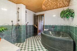 Kylpyhuon porealtaineen