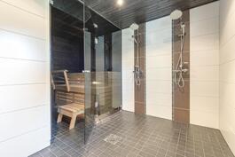 Wow, mikä kylpyhuone ja sauna.
