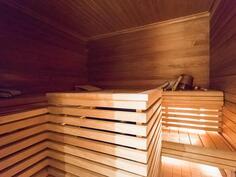 sauna/bastu
