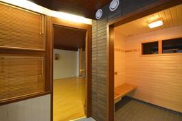 Kylpyhuonetta ja pukuhuonetta