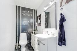 tyylikäs erillinen wc