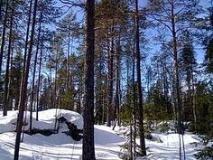 Aapajärvi