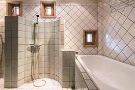 Tilavassa kylpyhuoneessa amme