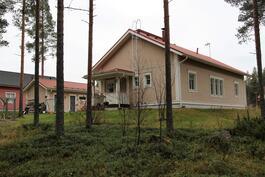 Asunrakennus karsottuna tontin metskön puolelta. Huomaa riittävät kallistukset pihan muotoilussa.