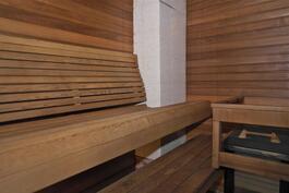 lauteet, panelointi ja katto Tuijaa