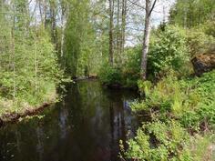 Näkymä joelle