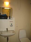 Kuvassa yksiön erillinen wc.