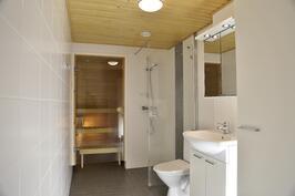 Iso kylpyhuone johon mahtuu pyykinpesu-torni