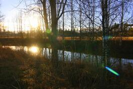 Joki maisemaa syysauringossa
