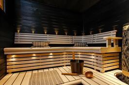 tyylikäs Sun Saunan sauna