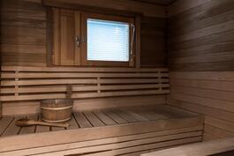 Viihtyisä ikkunallinen sauna.