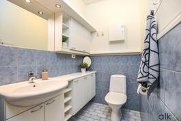 Alakerran erillinen wc on reilun kokoinen.