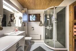 Kylpyhuoneessa tilava suihkukaappi.