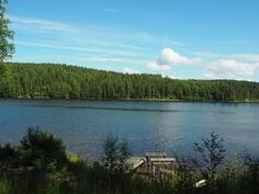 järvelle