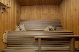 Alakerran sauna