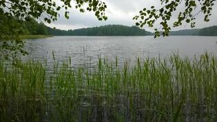 Venepaikka Paljärvellä n. 1 km päässä