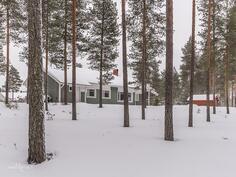 Mäntykankaalla, oma tontti rajoittuu kahdelta sivulta puistoalueeseen.