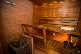 Tyylikäs sauna puukiukaalla