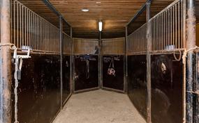 Tallissa on paikka seitsemälle hevoselle.