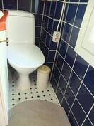 Alakerran pieni wc, jonka pinnat ja kalusteet on uusittu