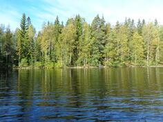 tontti järveltä