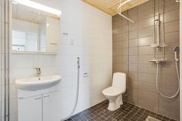 Saunallisen asunnon kylpyhuone