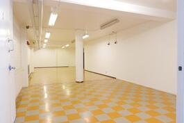Alakerran avointa tilaa / Nedre våningens öppet utrymme