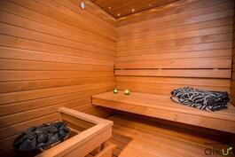Saunan materiaalit ovat tervaleppää, mutta ne voi myös vaihtaa