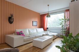 Olohuoneeseen mahtuu isompikin sohva