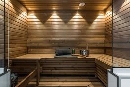 Upea sauna L-lauteilla ja pilarikiukaalla (Palloilijantie)