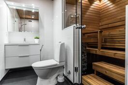 Kylpyhuoneessa toinen wc (Palloilijantie)