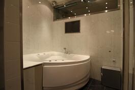 Ammehuoneen akvaario (600 L) sekä kotiteatteri kuuluvat asuntoon.