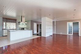 olohuone, ruokailitila ja keittiö yhtä suurta tilaa