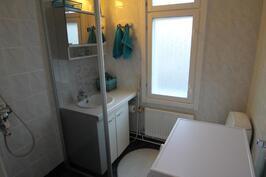 Kylpyhuone, jonne mahtuu hyvin pesukone