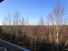 Näkymä parvekkeelta joen suuntaan...