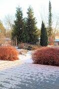 terassi/takapiha talvi