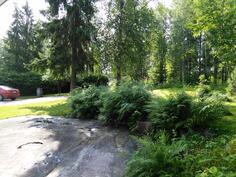 Kesäinen näkymä yläpihalta (talolta portin suuntaan)