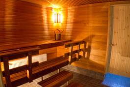 Taloyhtiön saunaosaston löylyhuone