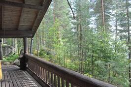 Terassilta metsään