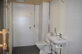 Remontoitu kylpyhuone/wc.