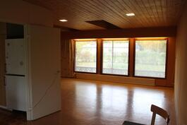 Olohuoneeseen tulee hyvin luonnonvaloa isoista ikkunoista