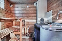 Kellarikerroksessa on tilava puulämmitteinen sauna