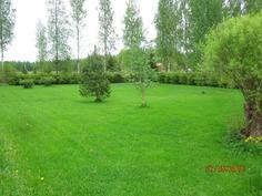 Iso nurmikko