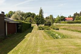 puutarhan osa jossa kasvimaa ja marjapensaita