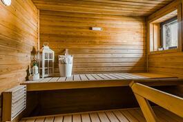 Ikkunallisessa saunassa hetivalmis-kiuas