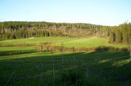 Kesäisin pihaan avautuu kaunis peltomaisema