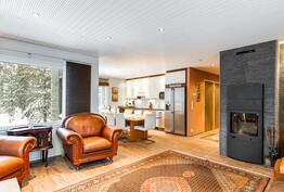 Olohuone ja keittiö